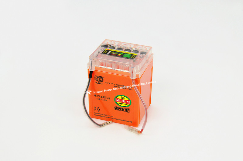 Intelligent Detected Battery with 12V Voltage and 2.5ah Capacity, 80mm Length, OEM Orders Available