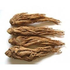 Angelica sinensis Extract