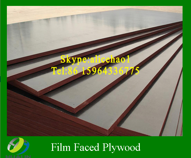 Film faced plywood/Shuttering plywood/Construction plywood/FFP
