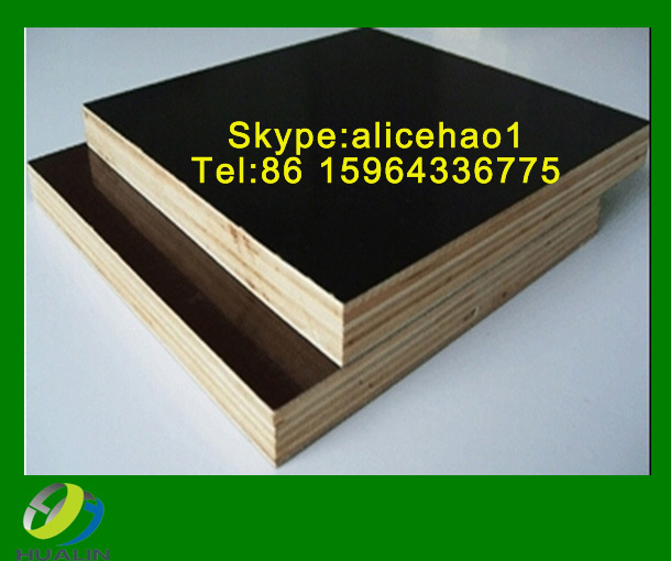 shandong linyi film faced plywood/marine plywood/construction plywood