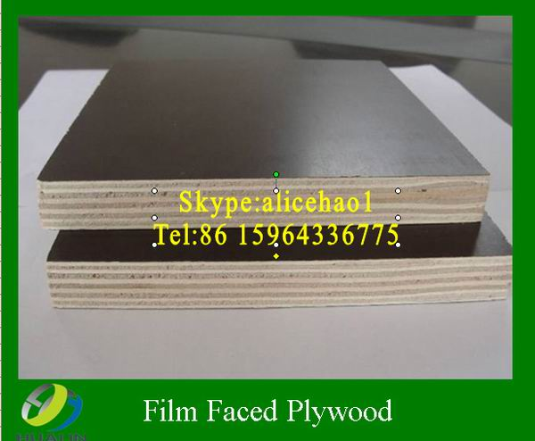 waterproof plywood for concrete forming 1220*2440 standard size film faced plywood