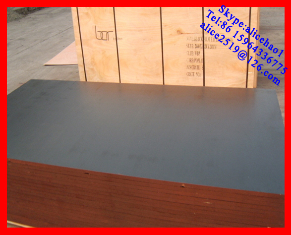 15mm film faced shuttering plywood(logo available) from Linyi
