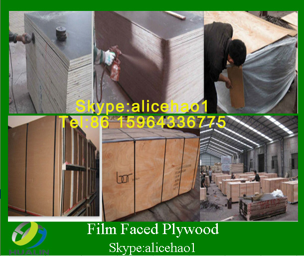 waterproof film faced plywood