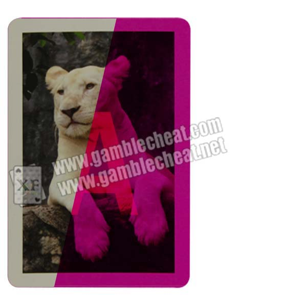 XF bonus marked cards for contact lenses/white tiger design/invisible ink/perspective glasses