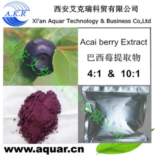 Acai Berry Extract 4:1 10:1 20:1 Anthocyanosides, procyanidins / Acai berry powder