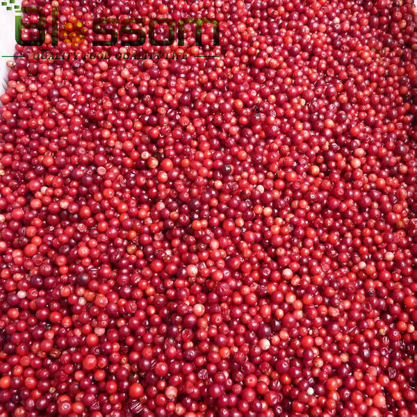 IQF lingonberry frozen lingonberry
