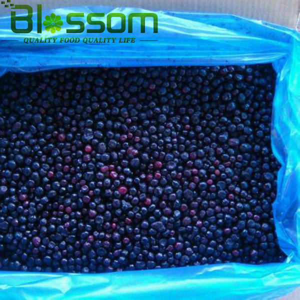 IQF blueberry frozen blueberry