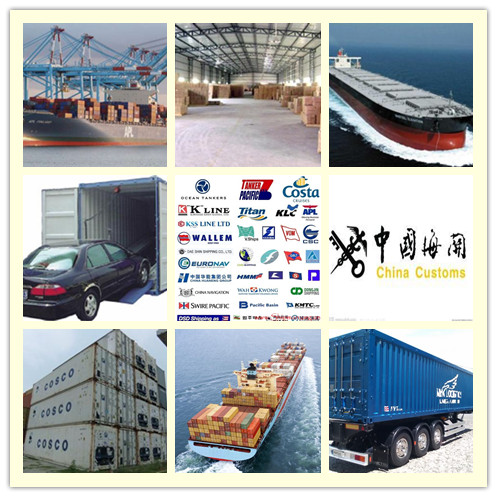 Reliable and Professional Shipping Agent from China to Worldwide