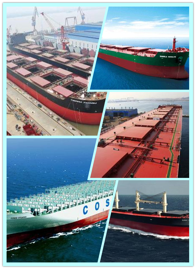 Professional Shipping Services for Special Container from China to Oceania