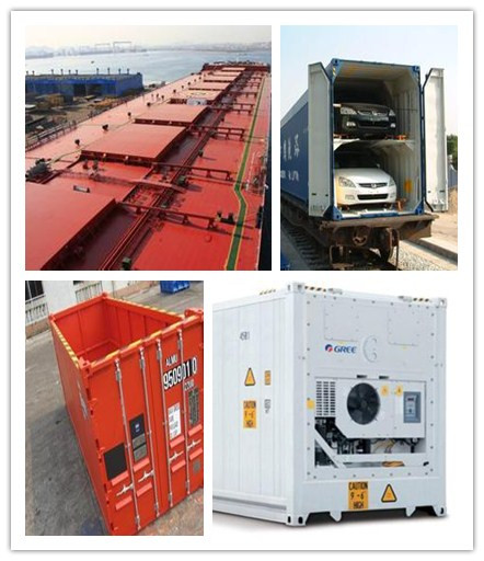 Bulk&Open-top&Reefer&Car Container Shipping Services from China to South America