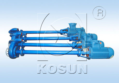 Vertical Submersible Slurry Pump for Drilling