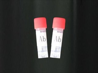 Rabbit anti-Guinea Pig Interferon gamma polyclonal Antibody