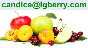 Wholesale 100% superfruit blends