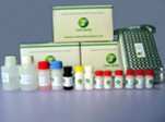 Lincomycin ELISA Test Kit