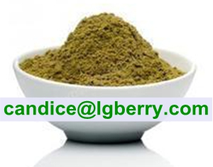 Crude Hemp Protein Powder 50%