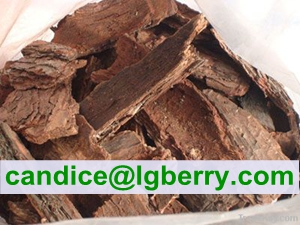 Formulation Supplement OPC 95% of Pine Bark Extract Powder