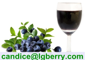 100% Natural blueberry juice concentrate