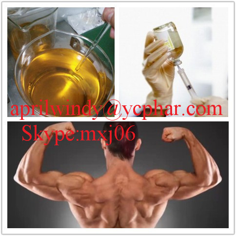 Great Quality Injectable Anabolic Steroids Oil Liquid Testosterone Undecanoate/Undecanoate 500