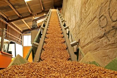 Tree Bark Pellet Mill with High Production and Quality
