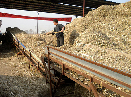 Development Obstacles for Wood Pellet Mill Industry