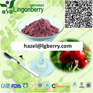 Wild Rose Hip Extract