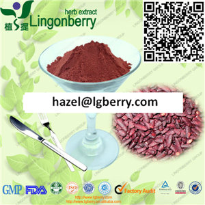 Red Yeast Rice extract Anthocyanin/ Lovastatin extract