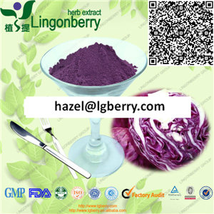 Red cabbage extract /anthocyanin