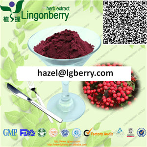 Chokeberry extract