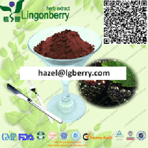 black cherry extract powder