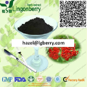 Elderberry fruit powder