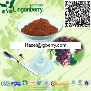 Grape Seed Extract OPC( Proanthocyanidins )
