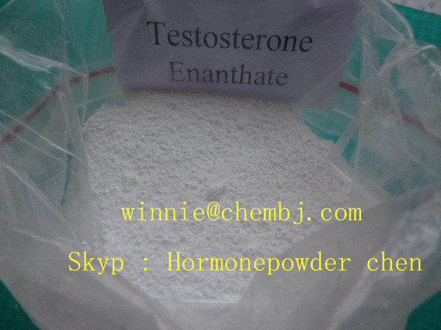 Anabolic Steroids Testosterone Enanthate