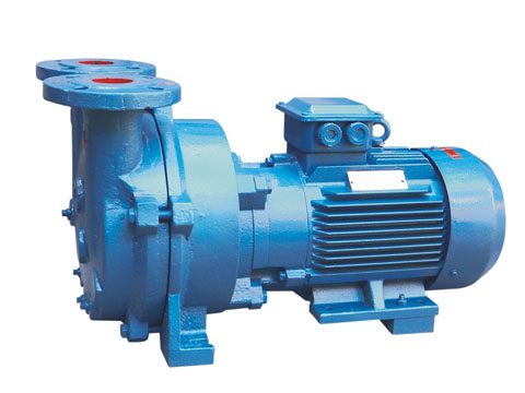2BV(SKA) series liquid ring type vacuum pump