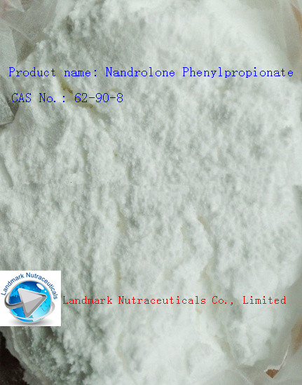 Nandrolone Phenylpropionate   good price
