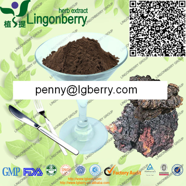 Wild Chaga Extract Powder Polysaccharide 10%-50%UV