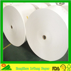 pe coating on paper PE Coated Paper Roll