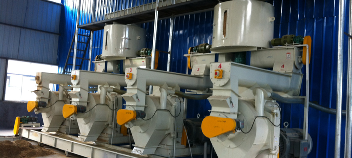 Pellet Mill  production line for sale Producti3on Line3