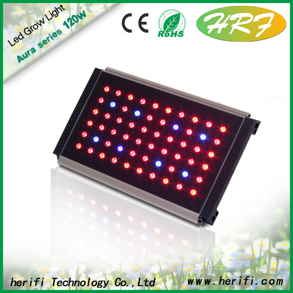 Herifi 60x3w AU001 LED hydroponic full spectrum grow lamp/light