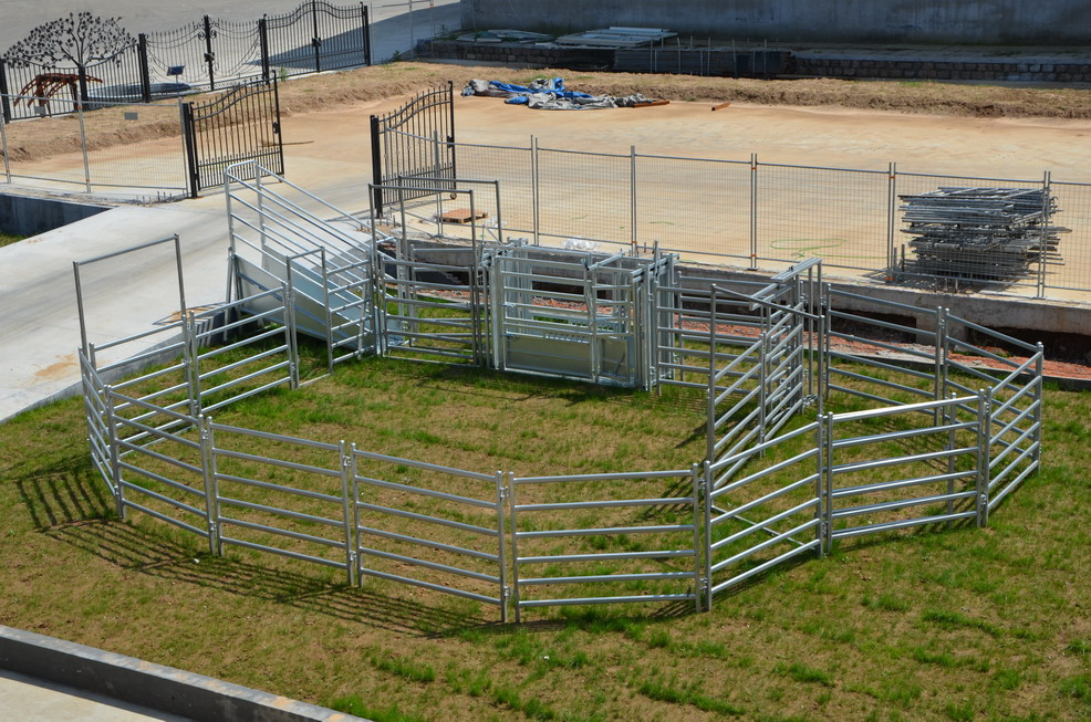 hot dipped galvanised oval cattle panel for Australia
