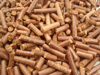 Wood Shavings Pellet Mill Price/ Wood Pellet Mill/Wood Shavings Pellet Mill