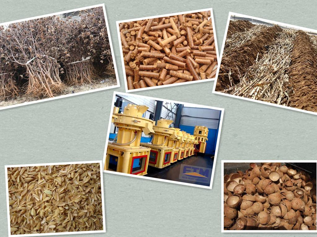 Wood Pellet Mill/Fote Wood Pellet Machin/Pellet Mill