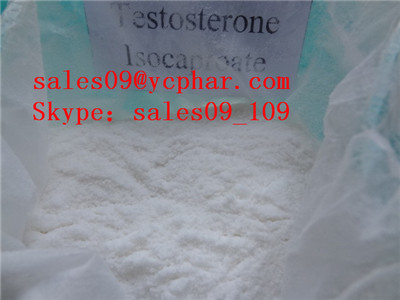 TestosteroTestosterone Isocaproate  (Skype:sales09_109ne Isocaproate  (Skype:sales09_109