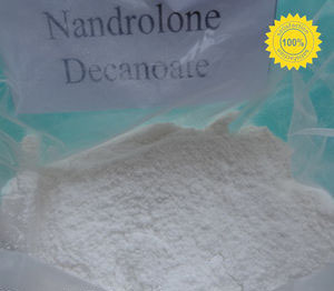 Nandrolone Decanoate Purity:99%CAS: 360-70-3