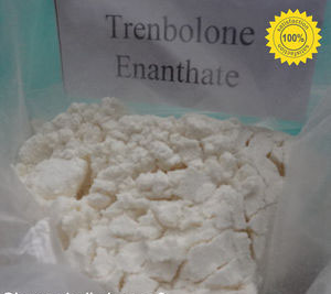 Appearance:Pale Yellow or Yellow Crystalline Powder Trenbolone enanthateCAS No.:10161-33-8
