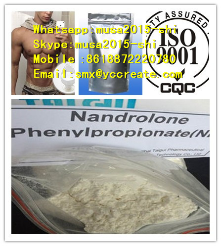Nandrolone phenylpropionate for Male Bodybuilding/Skype:musa2015-shi