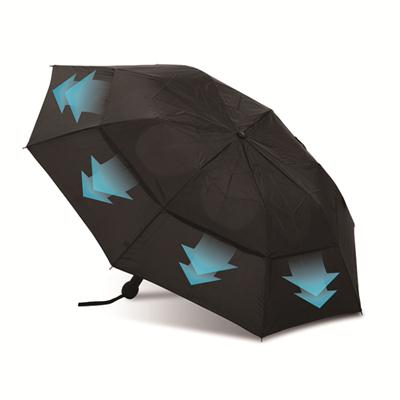 Auto Open And Close 2 Fold Windproof Umbrella