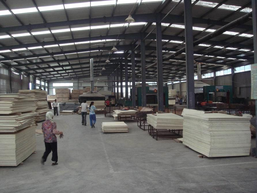 Film Faced Plywood For Construction Material