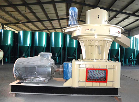 Wood Particle Pellet Mills/China Wood Particle Pellet Machine/Wood Shavings Pellet Mill