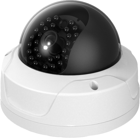 H.264 CMOS IR dome network camera-NV744MFWS-IR
