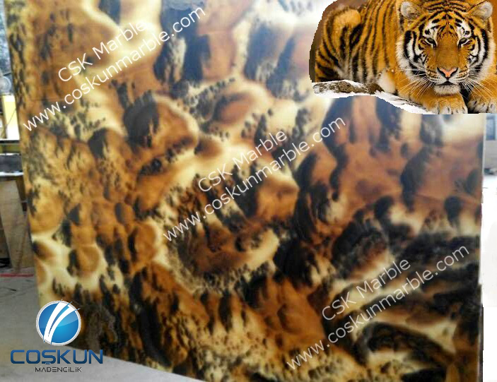 Turkey Tiger Skin Onyx Blocks & Slabs